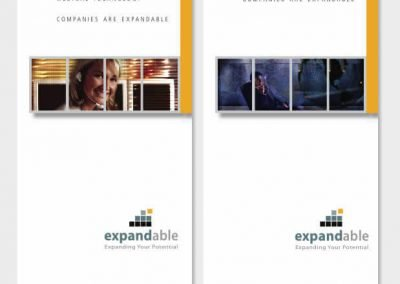 Expandable Vertical Market Flyers