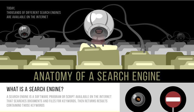 Anatomy of a Search Engine Infographic